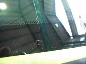 レクサスCT200ハイブリッドFスポーツ フロントガラス取り換え